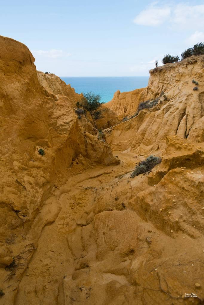 Sand Path #2